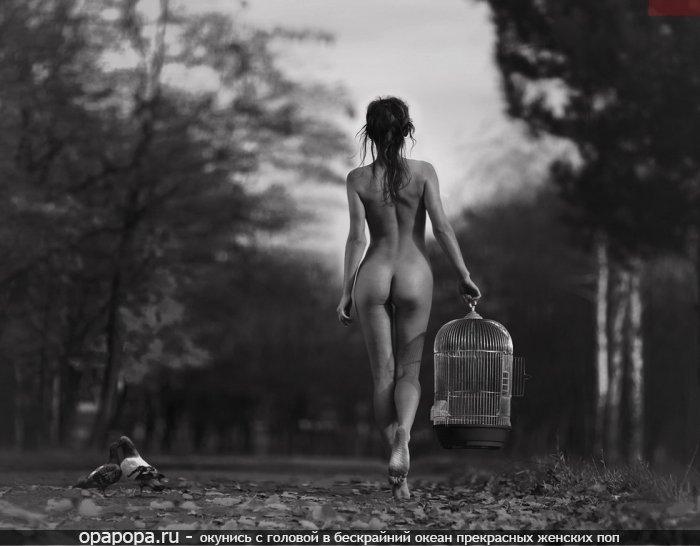 Черно-белое фото: девушка на природе на улице