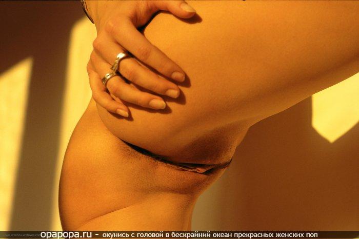 Фотография: упругая привлекательная попочка без трусиков
